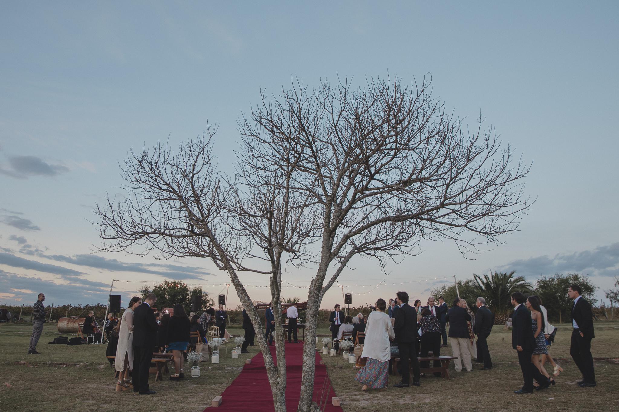 foto de boda en bodega la agricola jackson